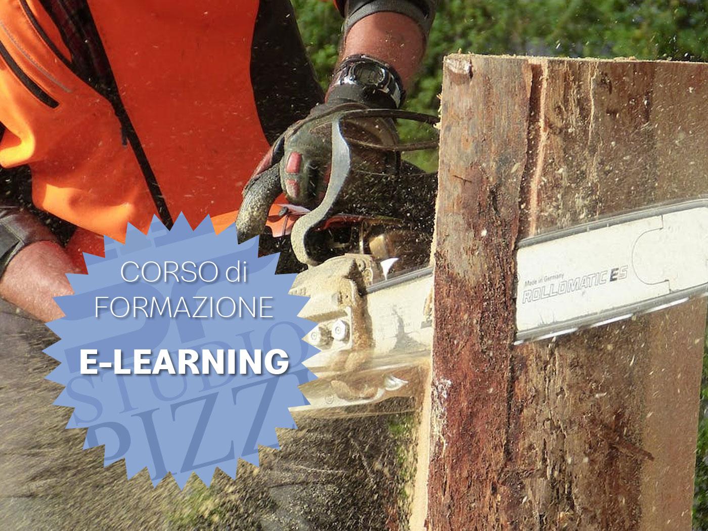 Studio PIZZI - formazione attrezzature lavoro motosega - decespugliatore - e-learning